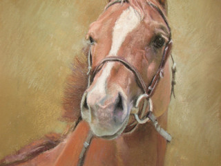 "9th Biennial ""NJEAA Art of the Horse"""