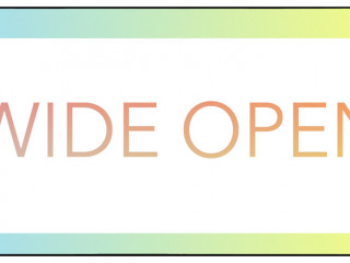 WIDE OPEN 11 - National Juried Art Show NYC